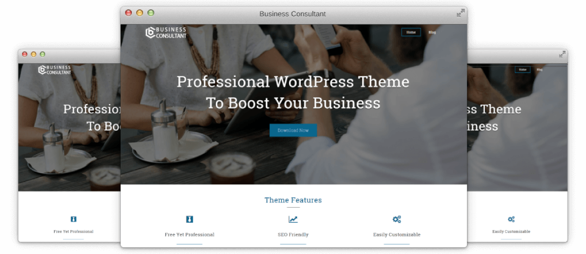 Business Consultant   ElectraThemes